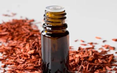 Olej santalové drevo proti stresu a úzkosti – účinky a použitie